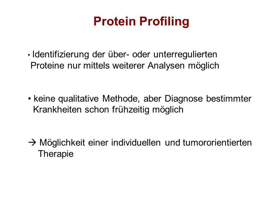Protein Profiling Proteine nur mittels weiterer Analysen möglich