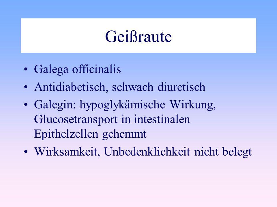 Geißraute Galega officinalis Antidiabetisch, schwach diuretisch