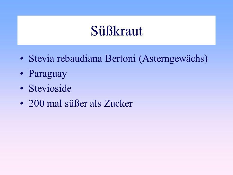 Süßkraut Stevia rebaudiana Bertoni (Asterngewächs) Paraguay Stevioside