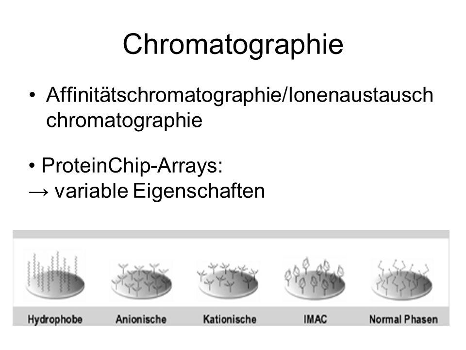 Chromatographie Affinitätschromatographie/Ionenaustauschchromatographie.