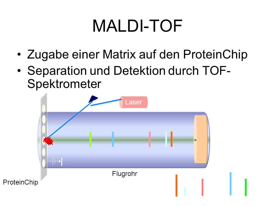 MALDI-TOF Zugabe einer Matrix auf den ProteinChip