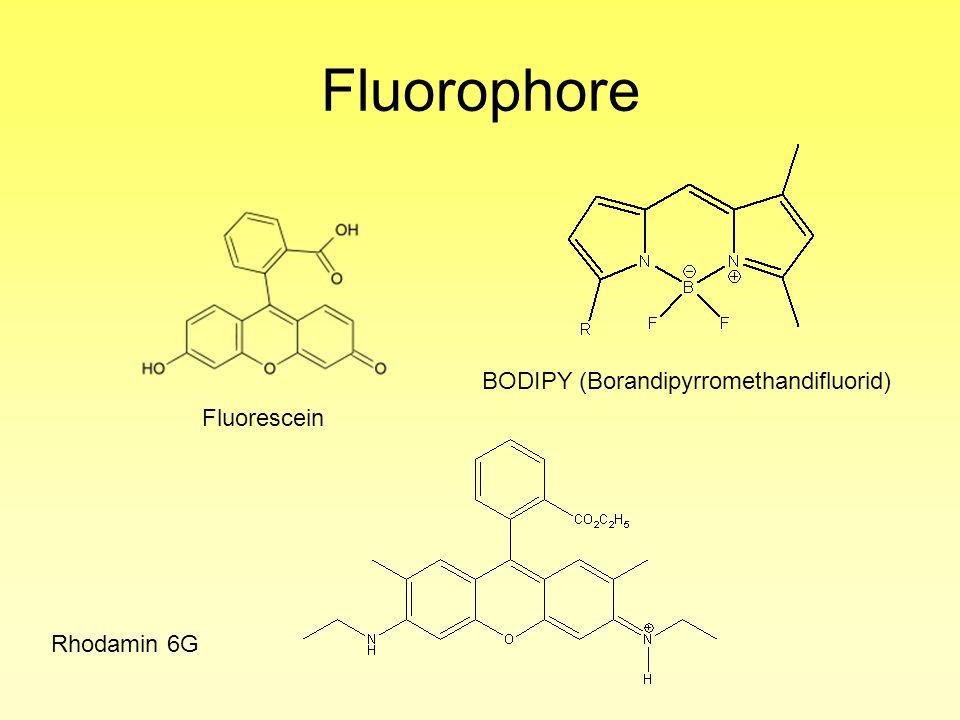 Fluorophore BODIPY (Borandipyrromethandifluorid) Fluorescein