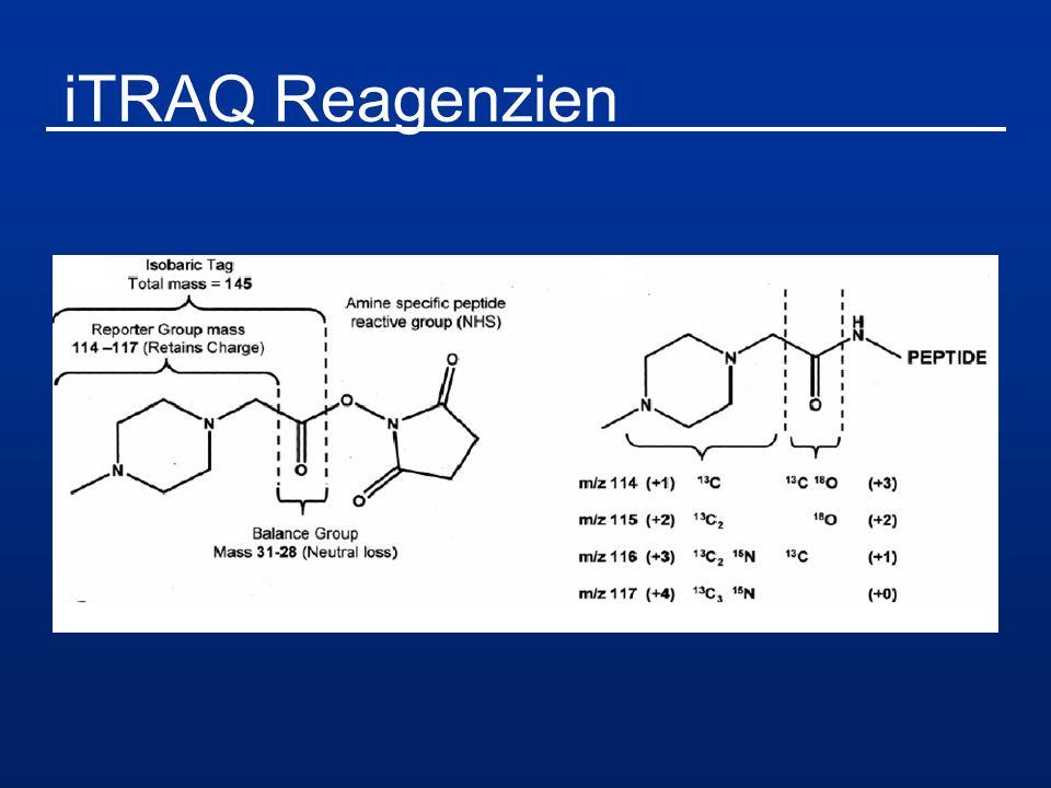iTRAQ Reagenzien