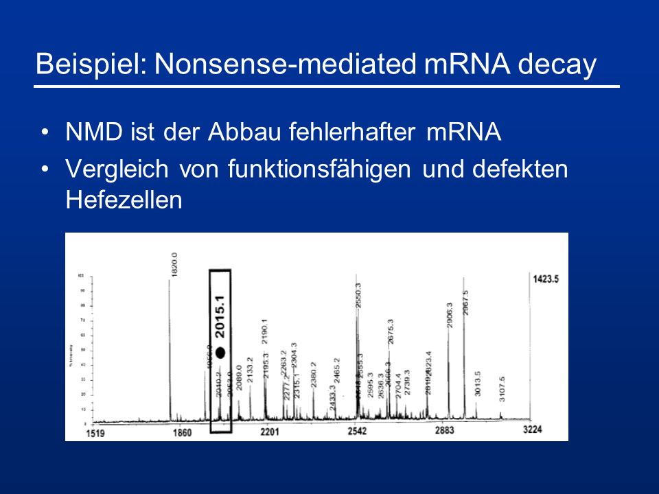 Beispiel: Nonsense-mediated mRNA decay