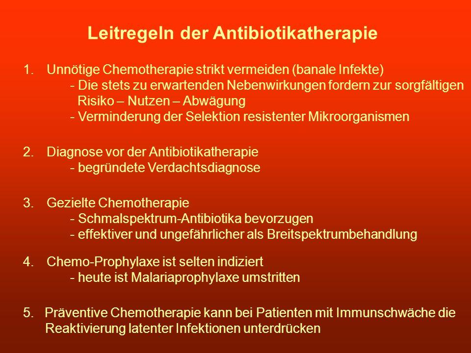Leitregeln der Antibiotikatherapie