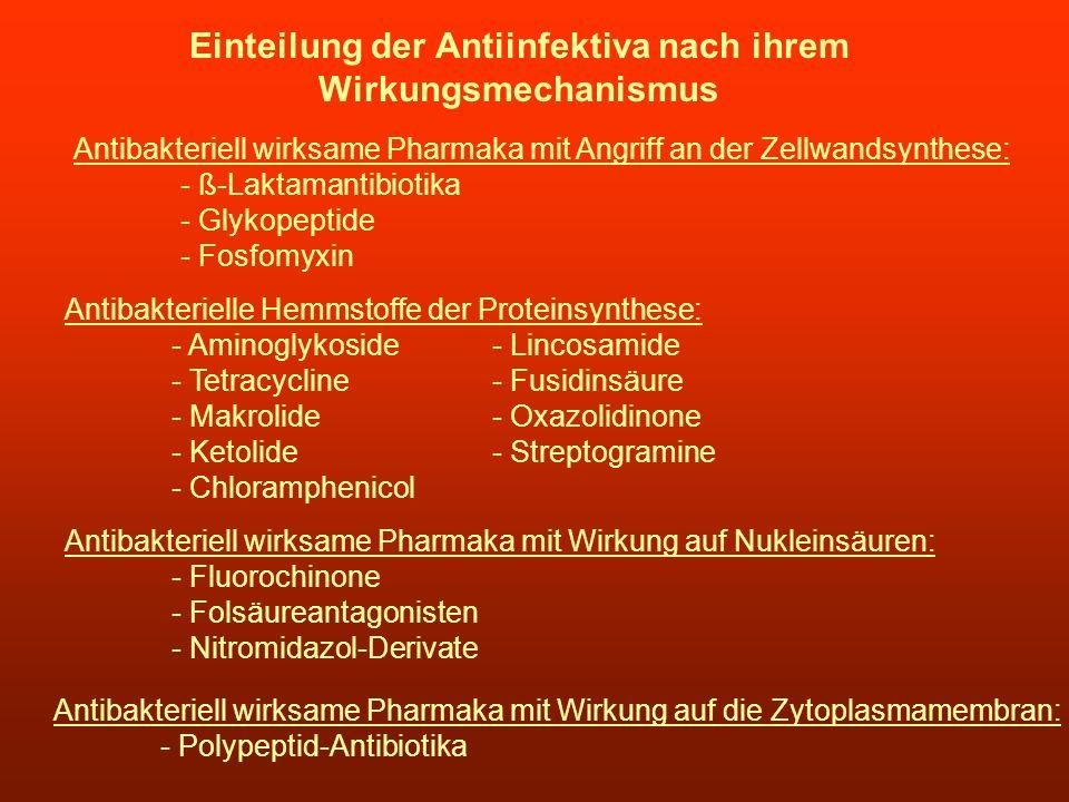 Einteilung der Antiinfektiva nach ihrem