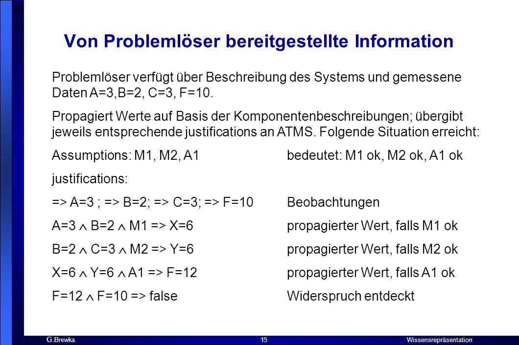 Von Problemlöser bereitgestellte Information