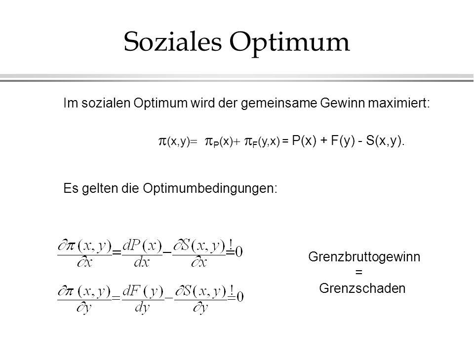 Soziales Optimum  (x,y)P(x)F(y,x) = P(x) + F(y) - S(x,y).