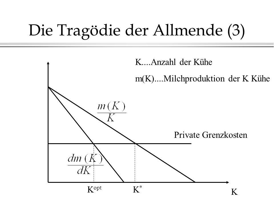 Die Tragödie der Allmende (3)