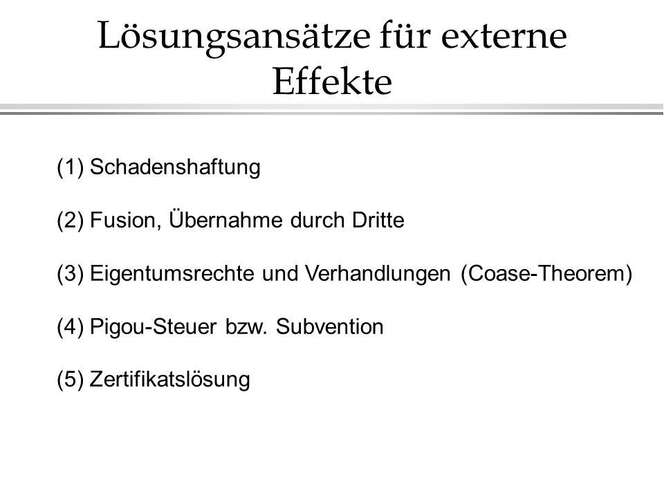 Lösungsansätze für externe Effekte