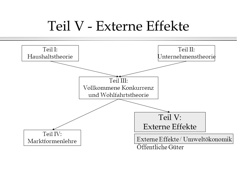 Teil V - Externe Effekte