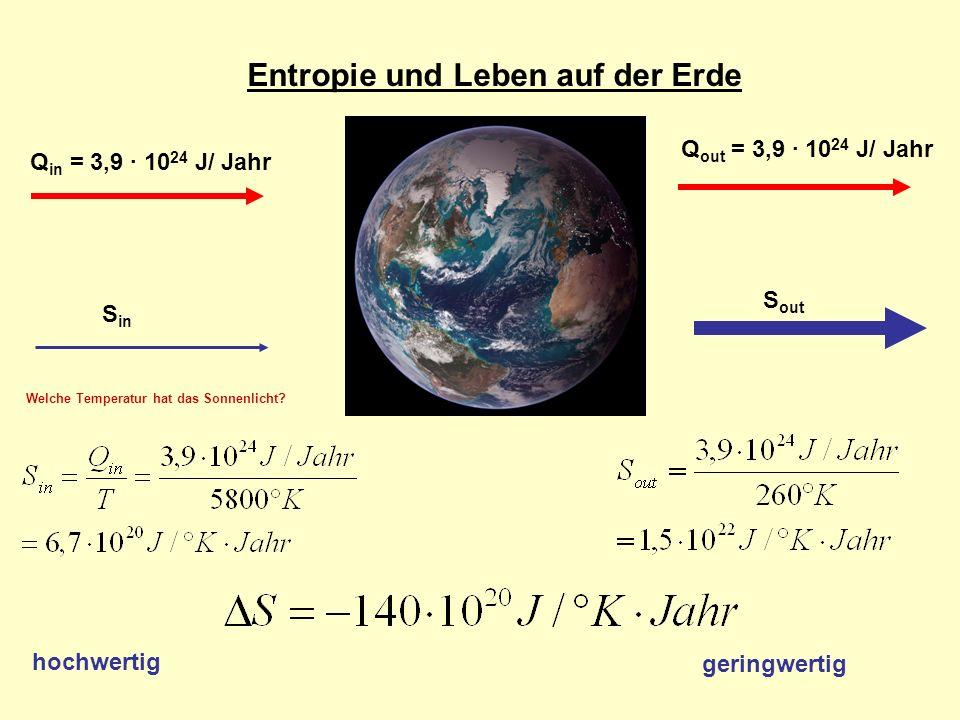 Entropie und Leben auf der Erde