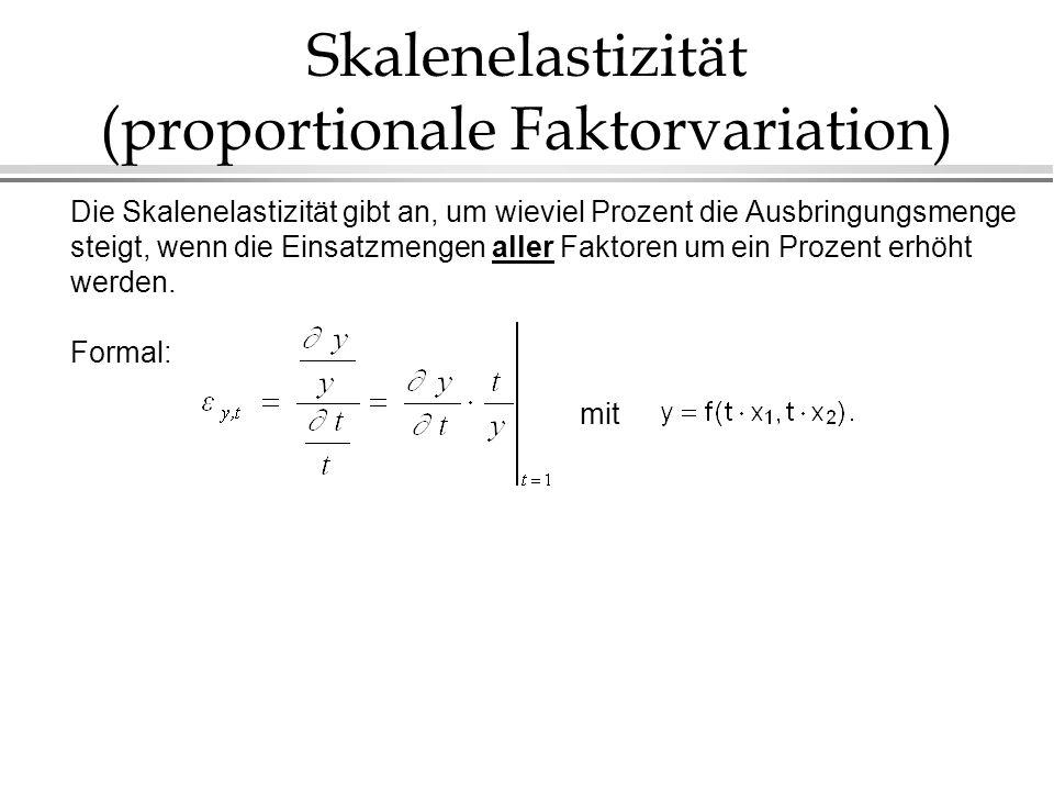 Skalenelastizität (proportionale Faktorvariation)