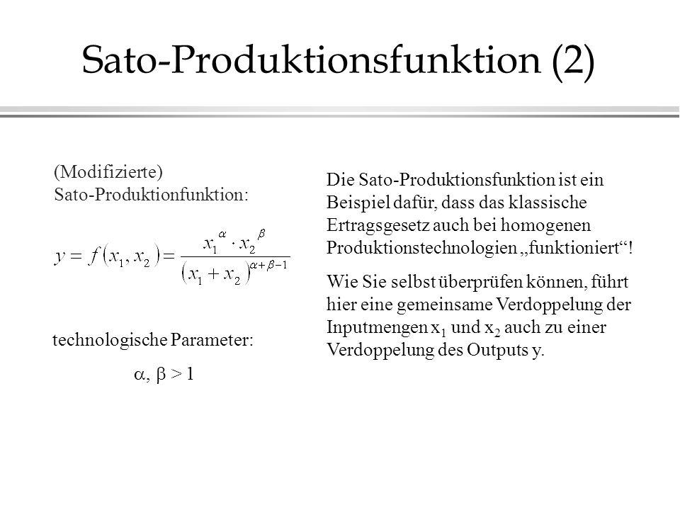 Sato-Produktionsfunktion (2)