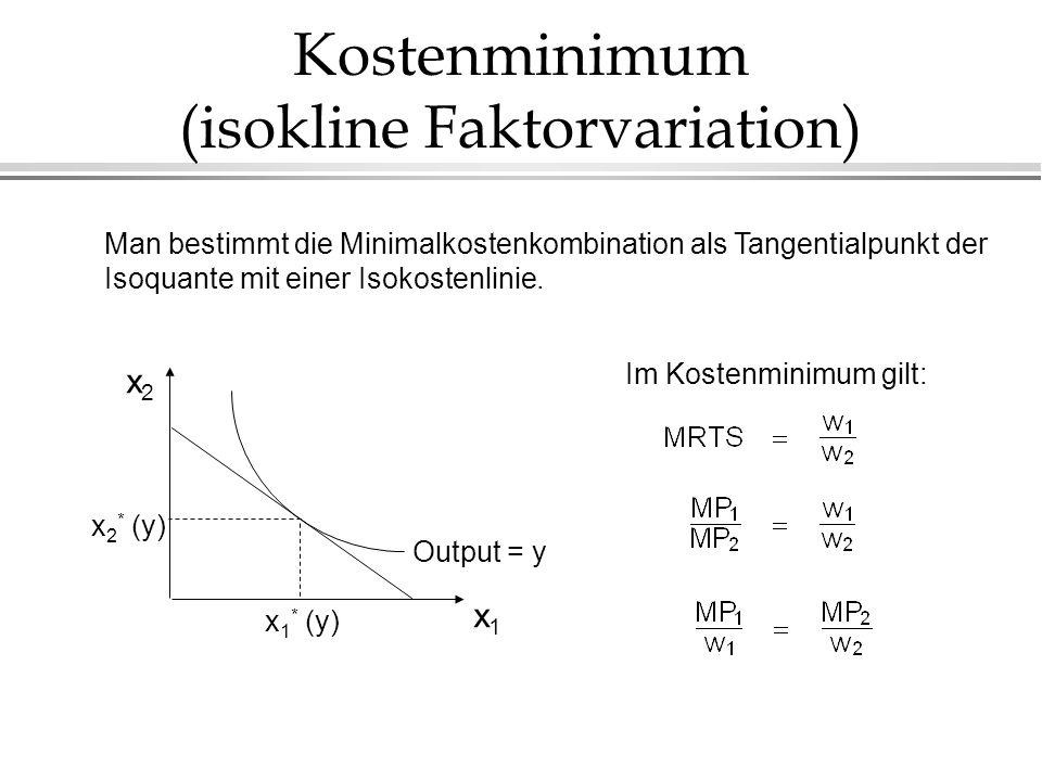 Kostenminimum (isokline Faktorvariation)