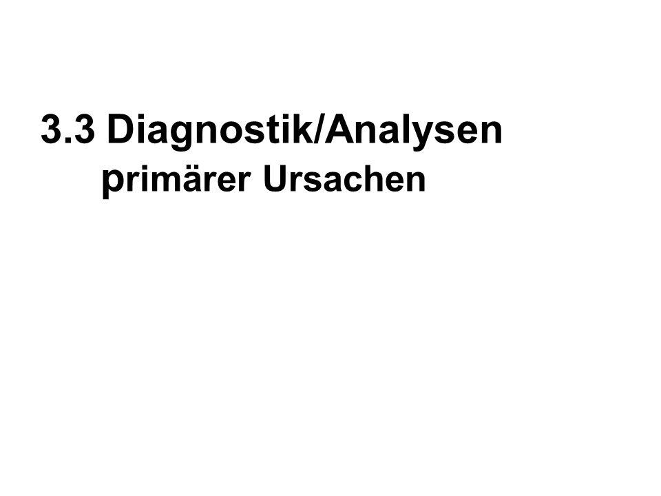 3.3 Diagnostik/Analysen primärer Ursachen