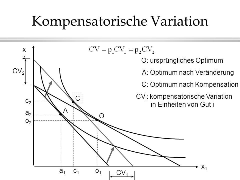 Kompensatorische Variation