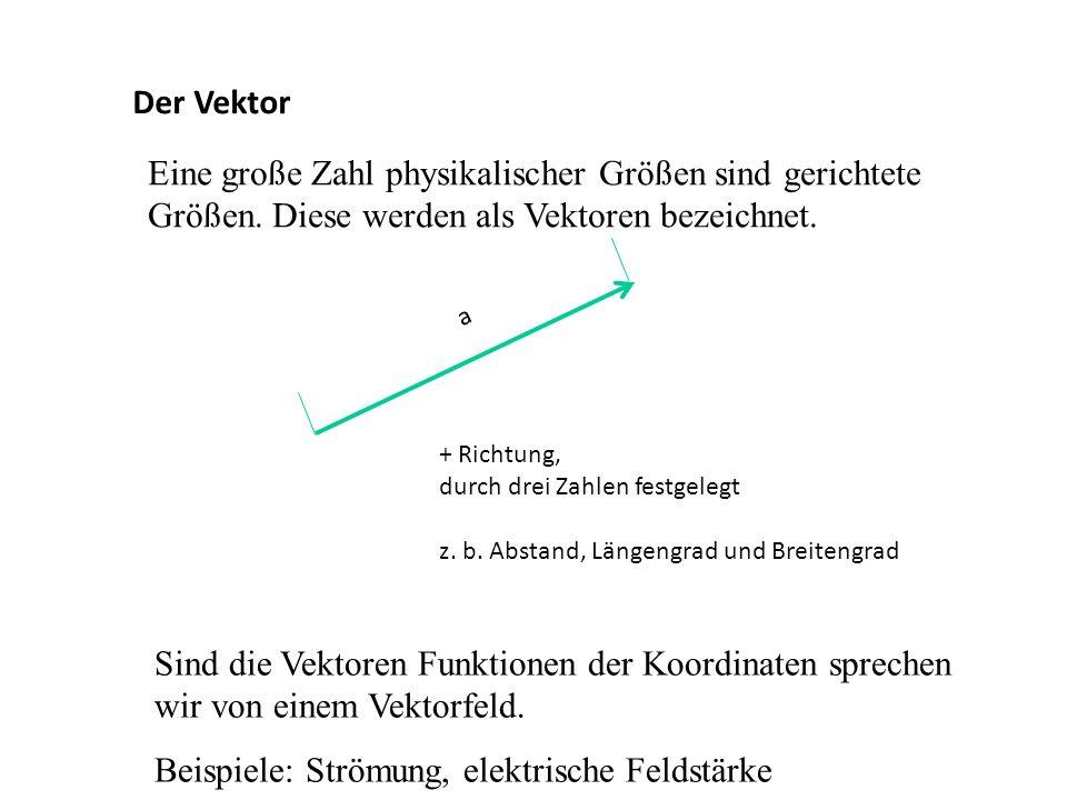 Beispiele: Strömung, elektrische Feldstärke