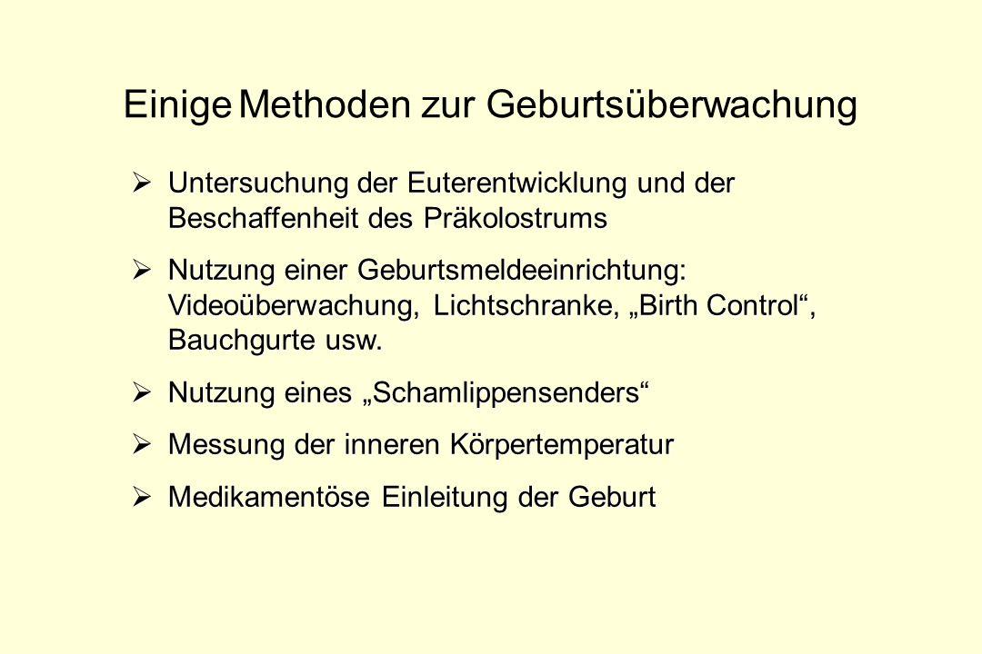 Einige Methoden zur Geburtsüberwachung