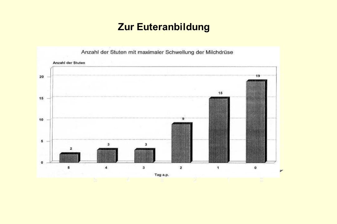 Zur Euteranbildung Anzahl der Stuten