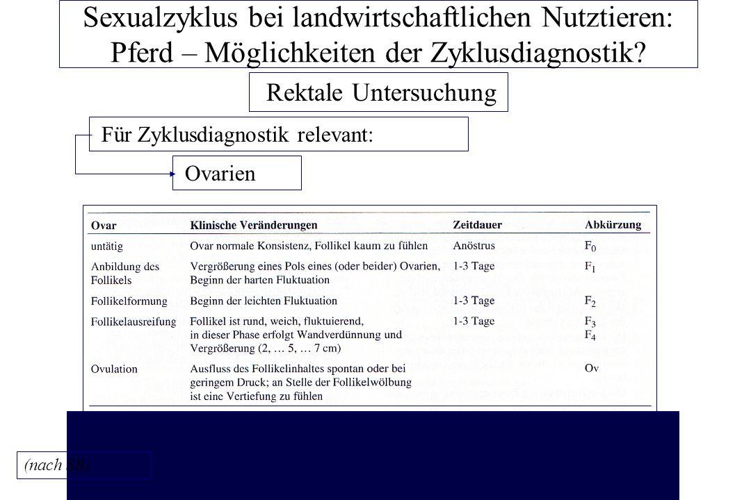 Großzügig Bild Der Ovarien Ideen - Anatomie und Physiologie des ...