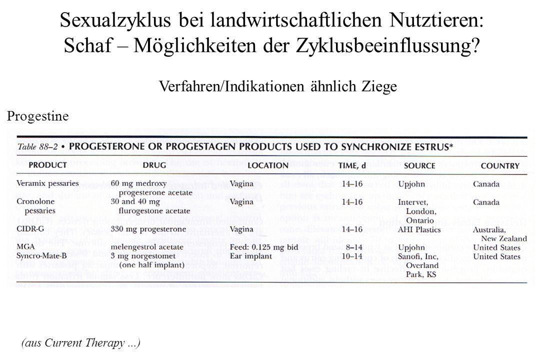 Verfahren/Indikationen ähnlich Ziege