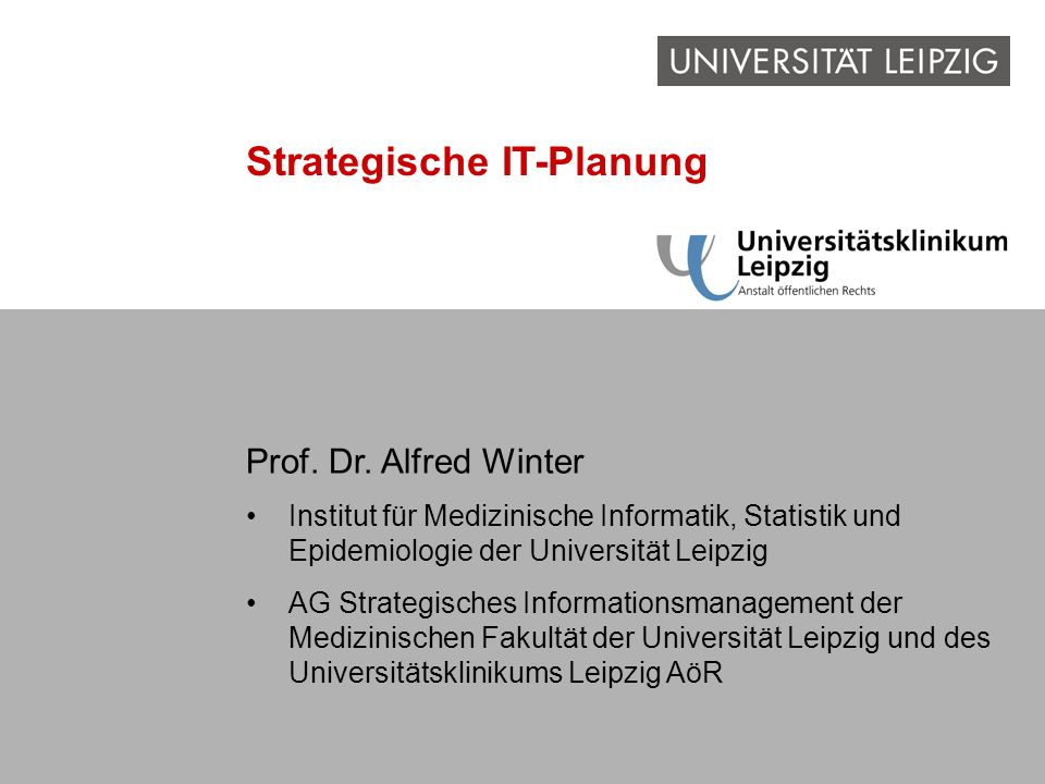 Strategische IT-Planung