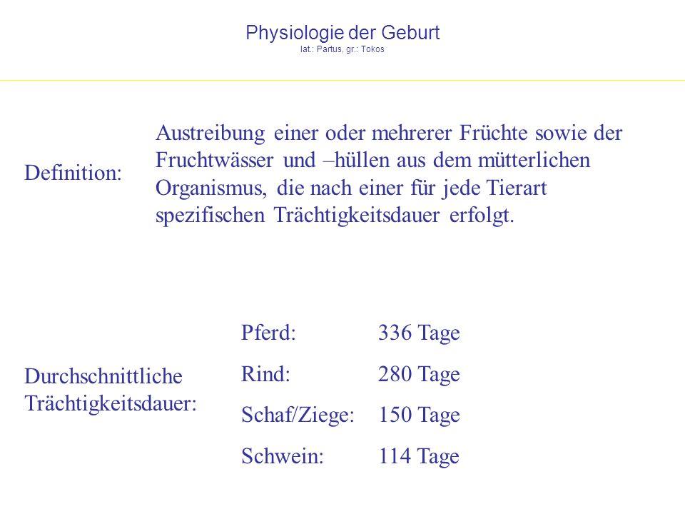 Physiologie der Geburt lat.: Partus, gr.: Tokos
