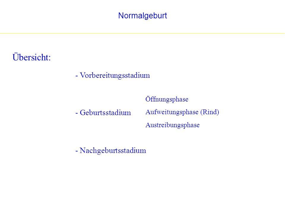 Übersicht: Normalgeburt - Vorbereitungsstadium - Geburtsstadium