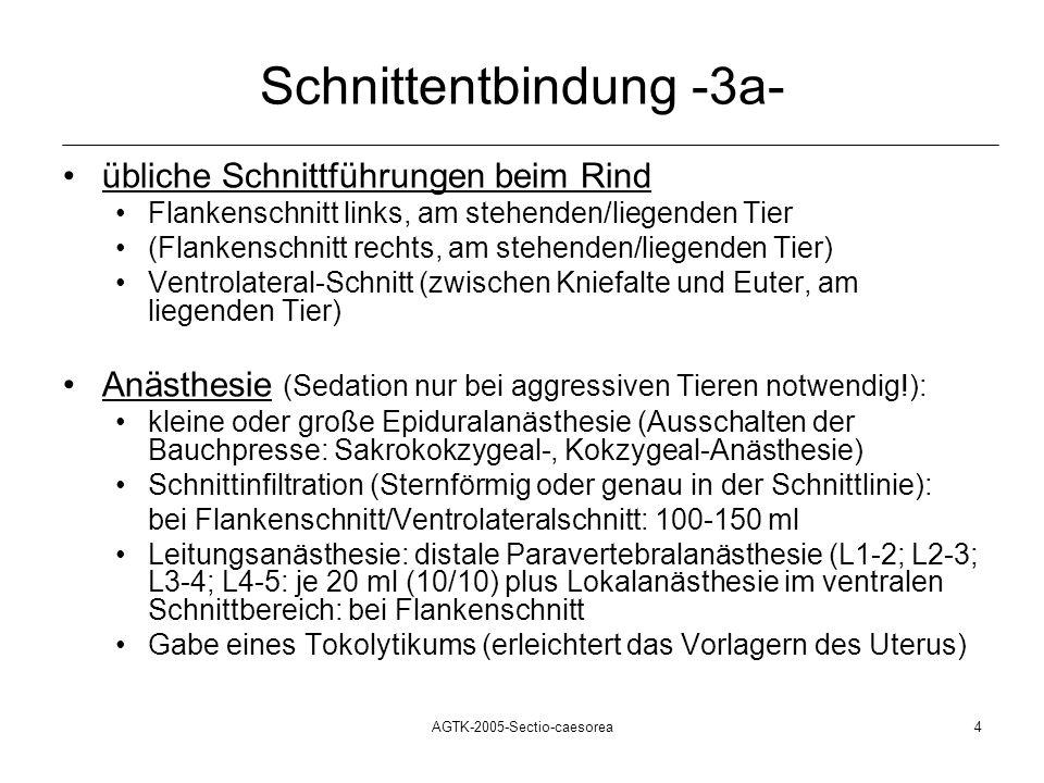 Schnittentbindung -3a-