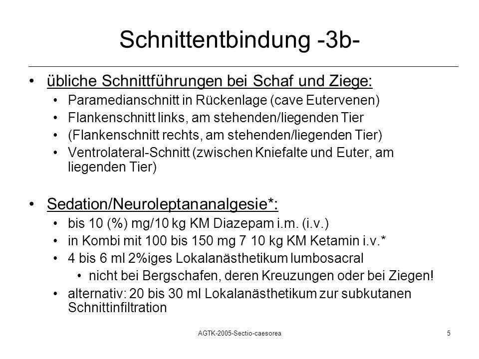 Schnittentbindung -3b-