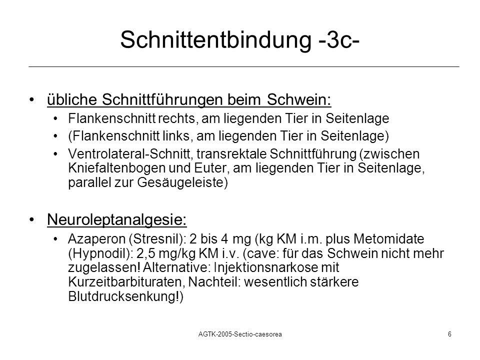 Schnittentbindung -3c-