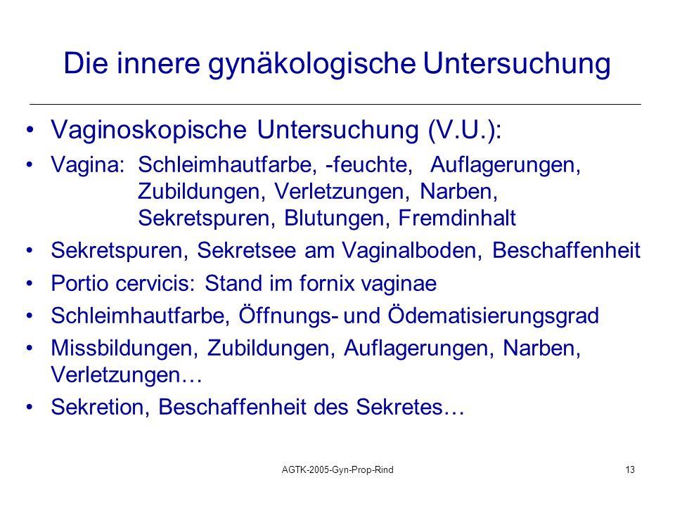 Die innere gynäkologische Untersuchung