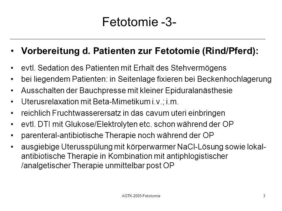 Fetotomie -3- Vorbereitung d. Patienten zur Fetotomie (Rind/Pferd):