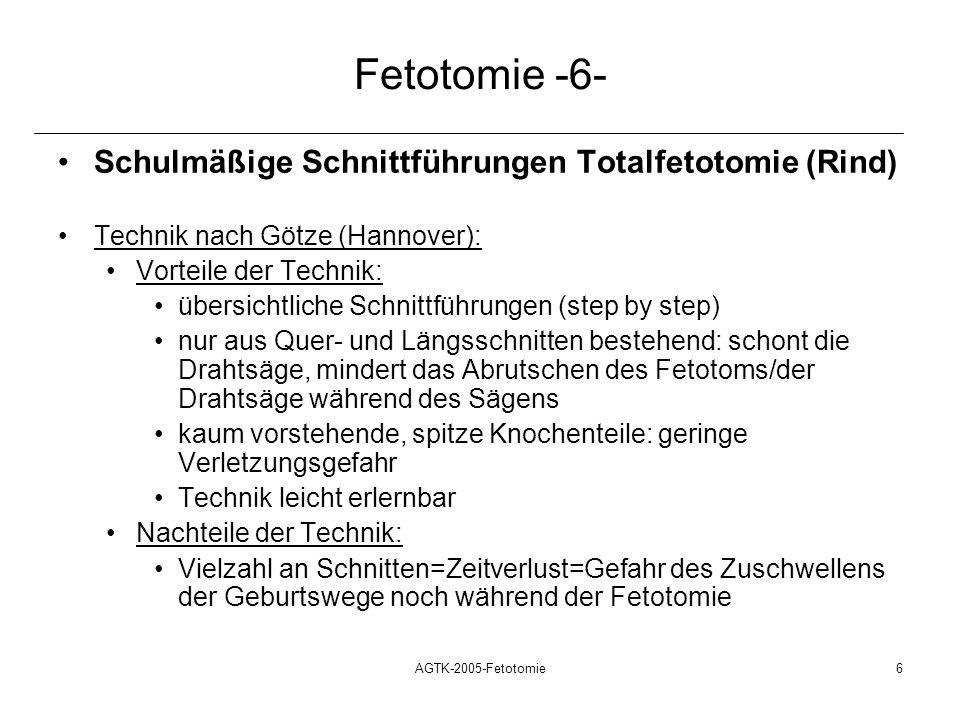 Fetotomie -6- Schulmäßige Schnittführungen Totalfetotomie (Rind)