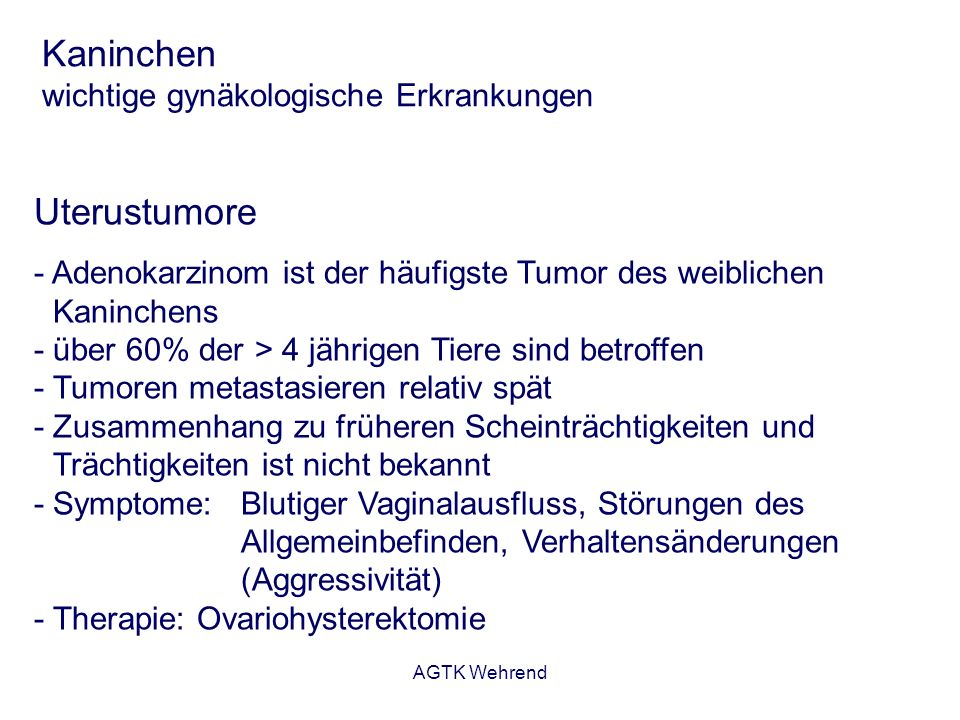 intrauteriner fruchttod anzeichen