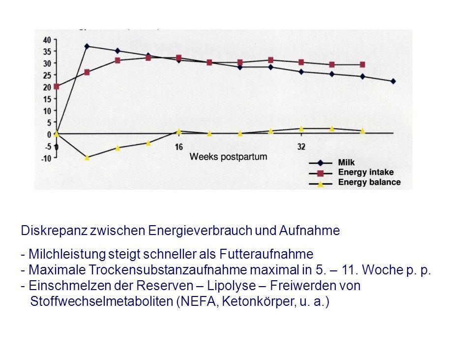 Diskrepanz zwischen Energieverbrauch und Aufnahme