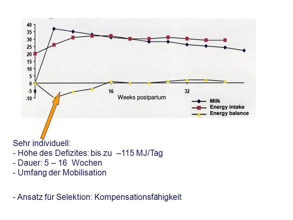 Sehr individuell: - Höhe des Defizites: bis zu –115 MJ/Tag - Dauer: 5 – 16 Wochen - Umfang der Mobilisation