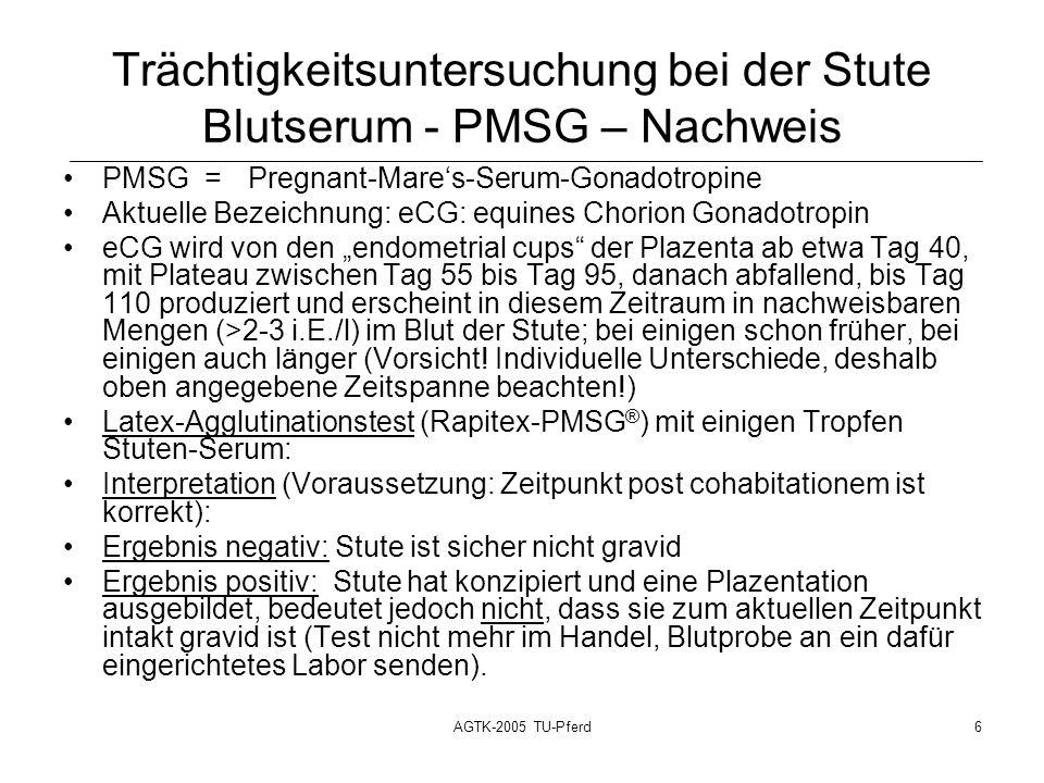 Trächtigkeitsuntersuchung bei der Stute Blutserum - PMSG – Nachweis