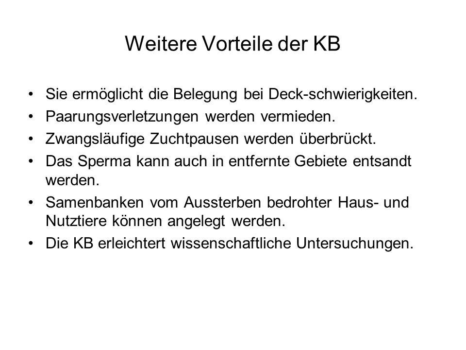Weitere Vorteile der KB