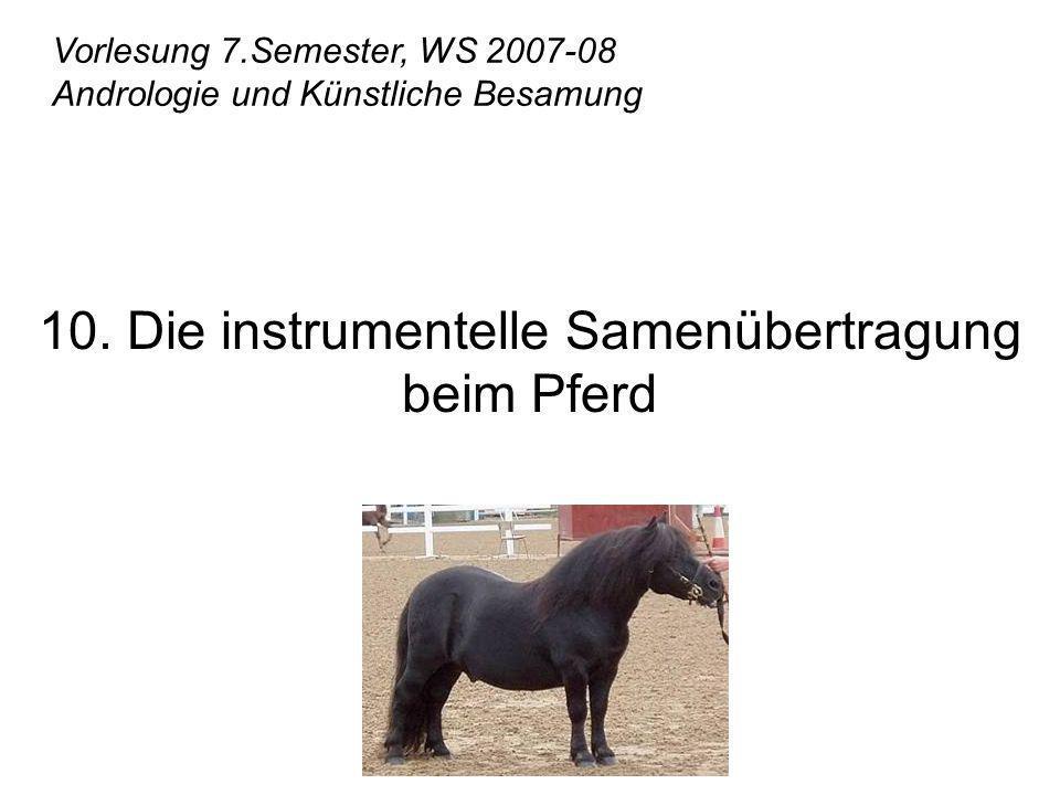 10. Die instrumentelle Samenübertragung beim Pferd