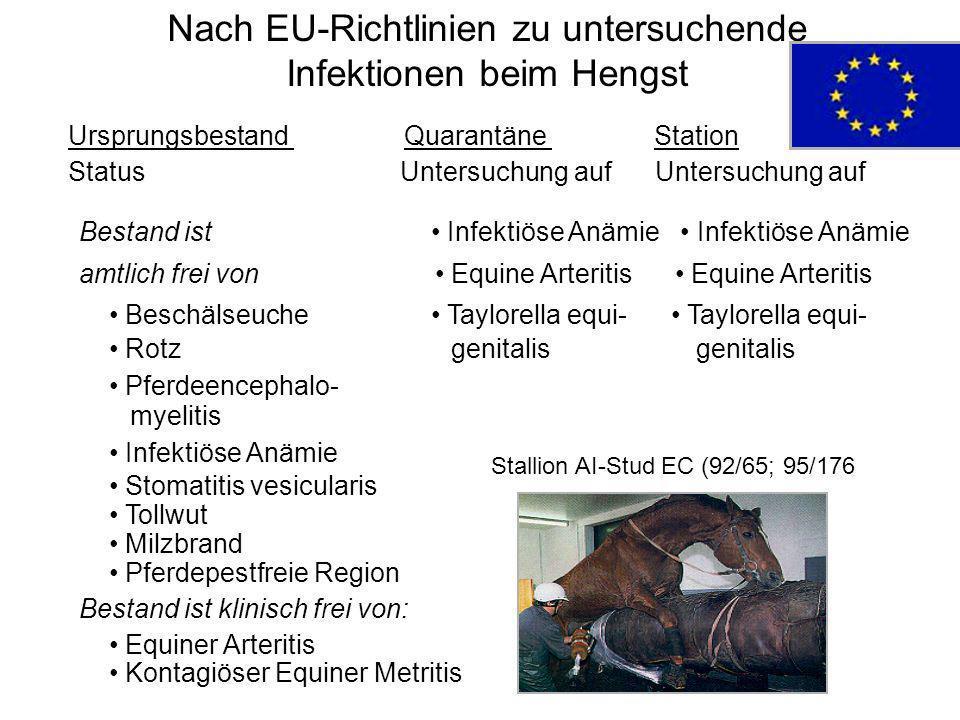 Nach EU-Richtlinien zu untersuchende Infektionen beim Hengst