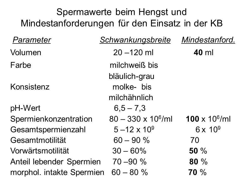 Spermawerte beim Hengst und Mindestanforderungen für den Einsatz in der KB