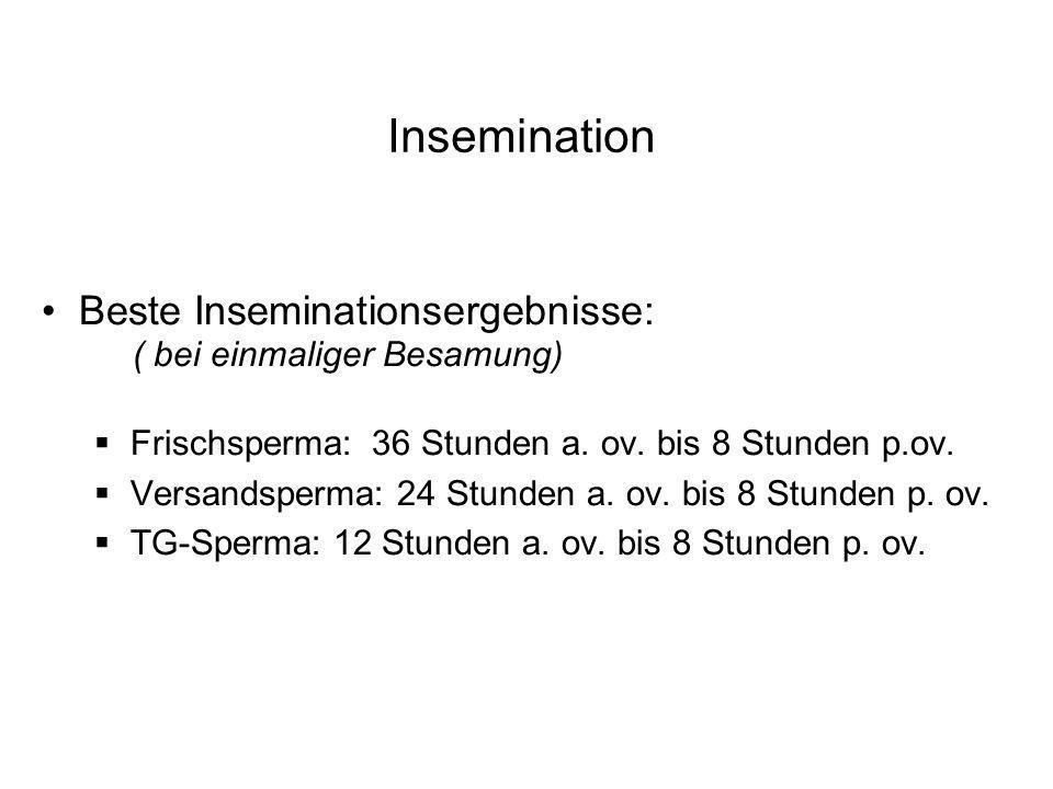 Insemination Beste Inseminationsergebnisse: ( bei einmaliger Besamung)
