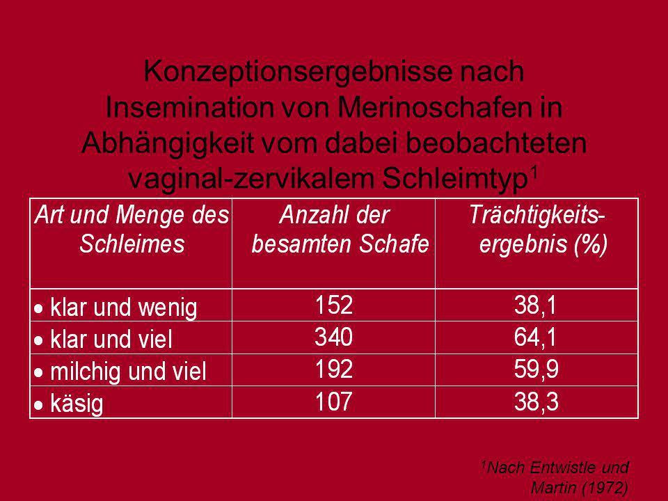 Konzeptionsergebnisse nach Insemination von Merinoschafen in Abhängigkeit vom dabei beobachteten vaginal-zervikalem Schleimtyp1