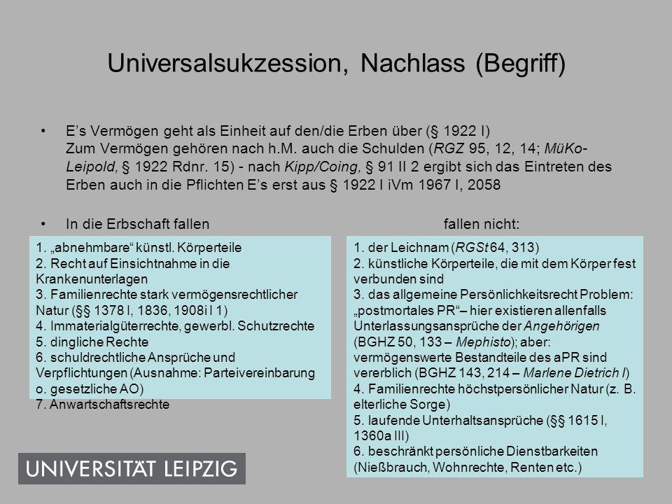 Universalsukzession, Nachlass (Begriff)