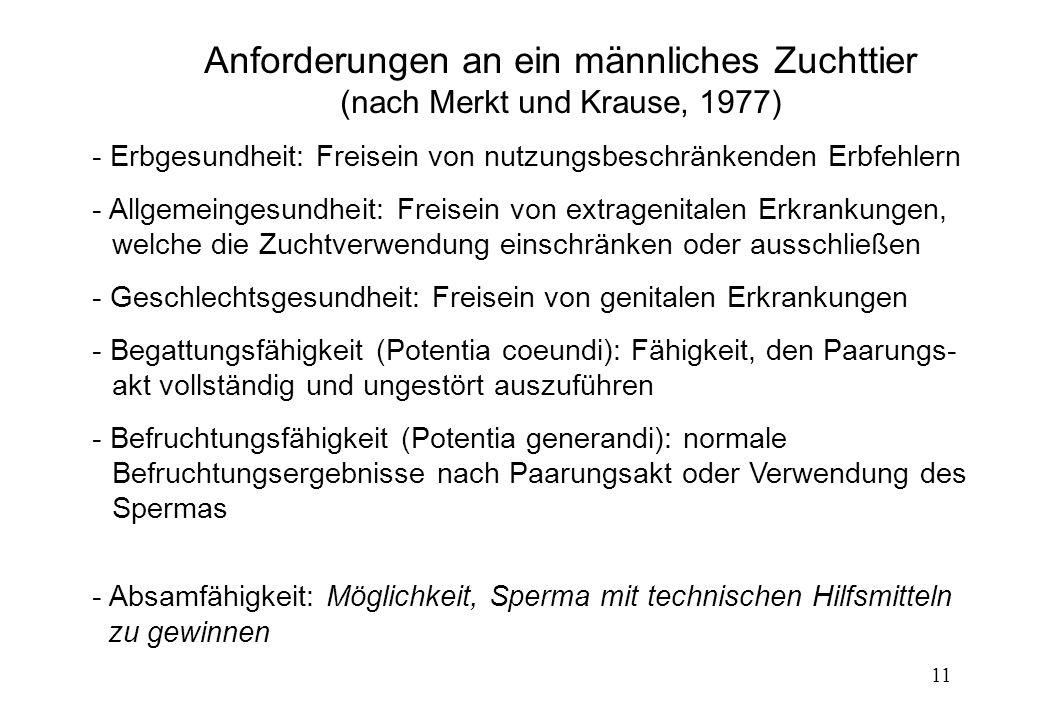 Anforderungen an ein männliches Zuchttier (nach Merkt und Krause, 1977)