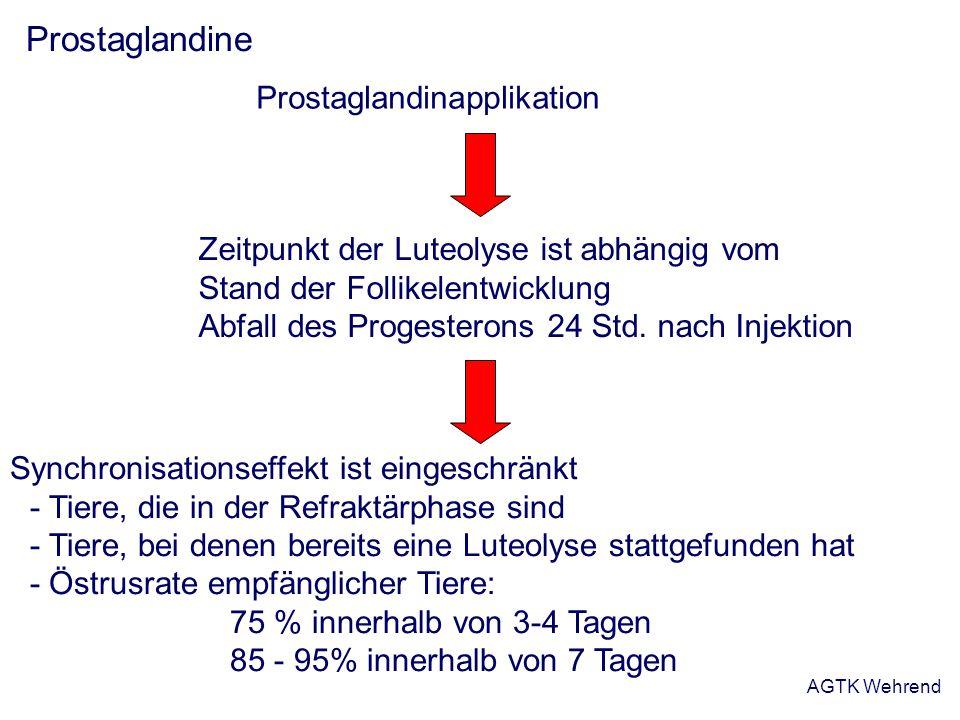 Prostaglandine Prostaglandinapplikation