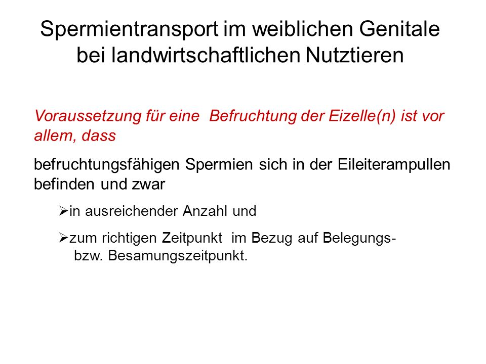 Spermientransport im weiblichen Genitale bei landwirtschaftlichen Nutztieren
