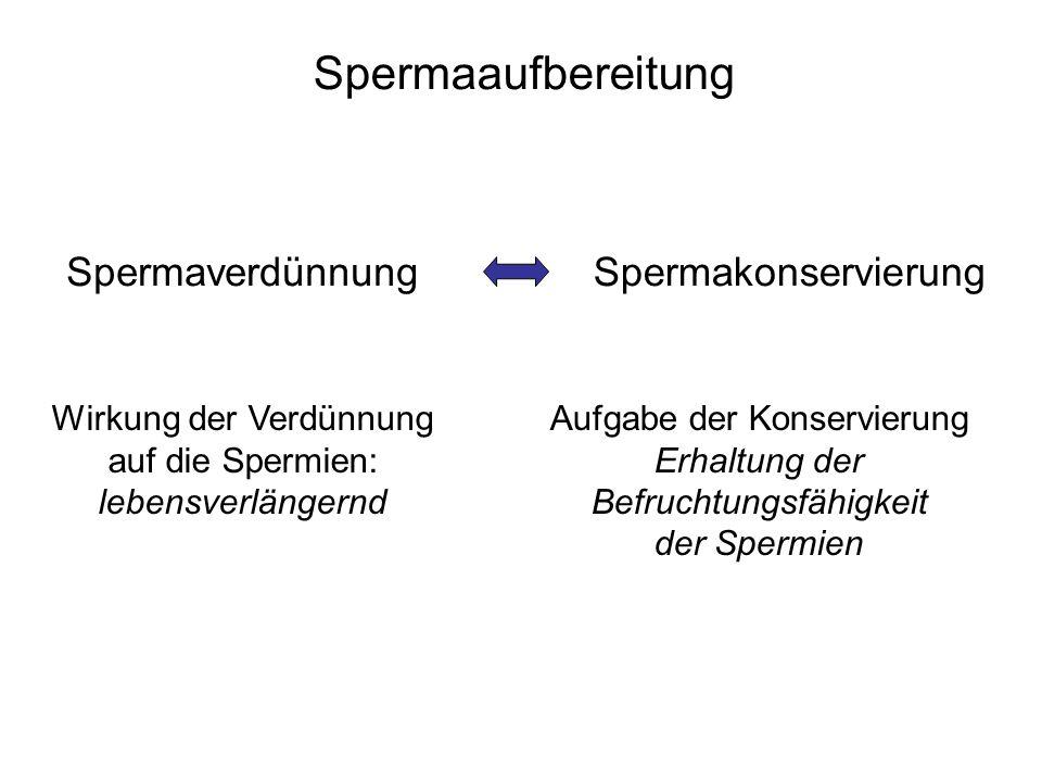 Wirkung der Verdünnung auf die Spermien: lebensverlängernd